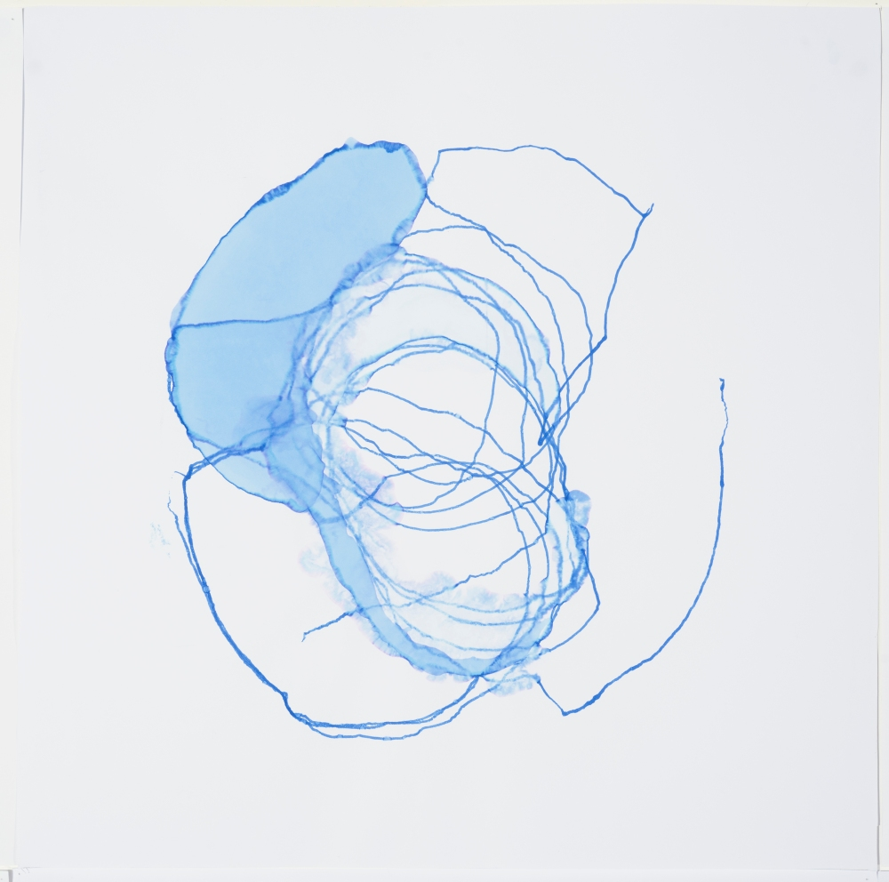 Dierdre Pearce, ocular transformations, 2016. One from a series of 14. Collaborative drawings between the drawing machine petrie dish (2016) and and the artist. Each 60 x 60 cm. Photograph Brenton McGeachie.
