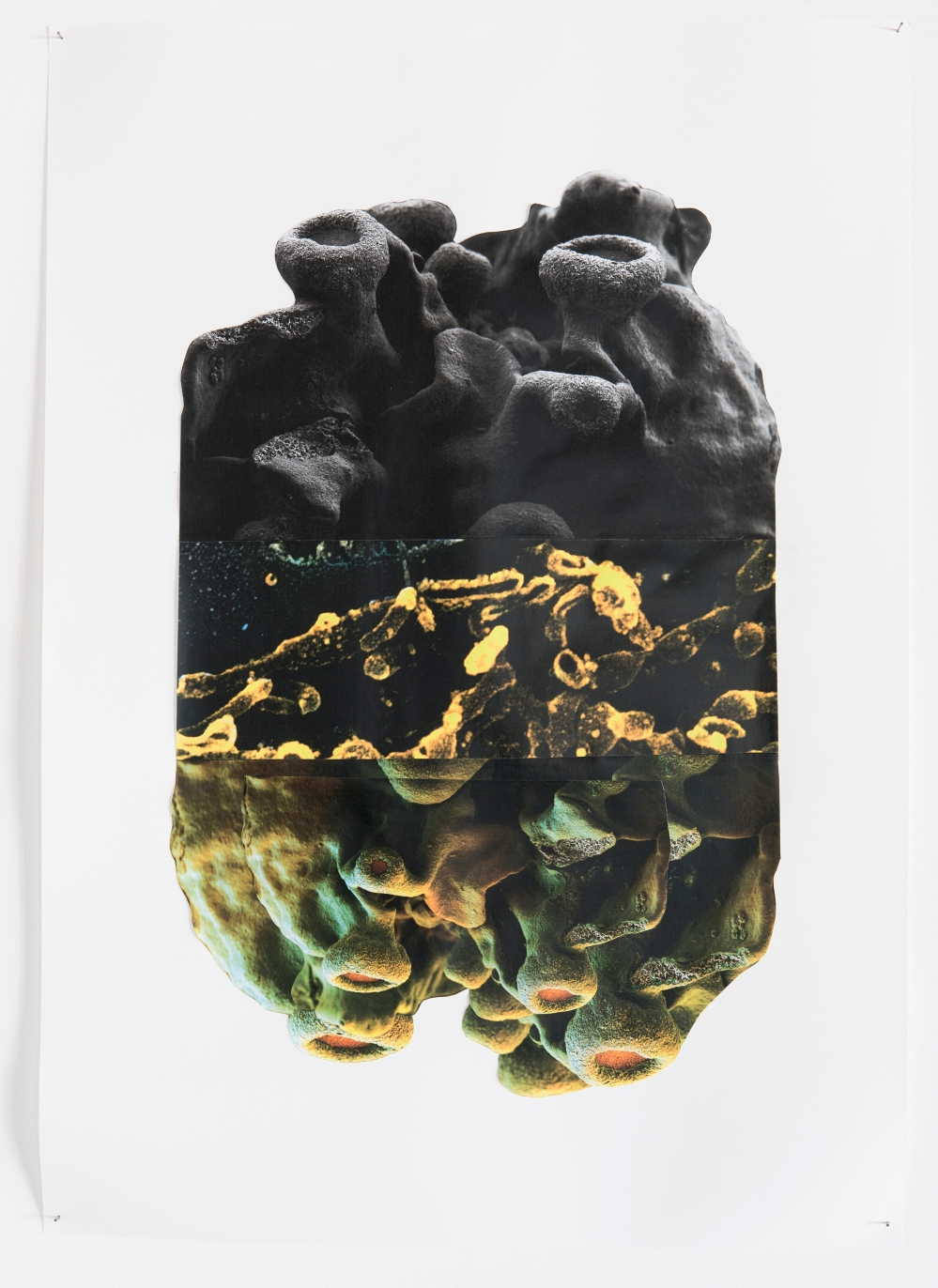 Dierdre Pearce, parataxis 1, 2017. From a series of collages of found digital and printed images and the artist's photographs. Photograph Brenton McGeachie
